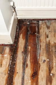 water damage to wood floor